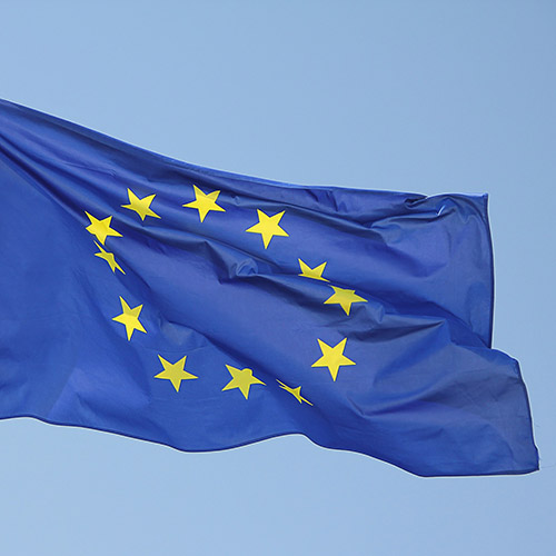 Amendment to the European REACH Regulation